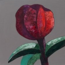 """Red"" • 2011 • oil on canvas • 40 x 40 cm • (private collection)"